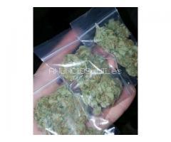 Cepas de marihuana de alta calidad y productos de marihuana a la venta